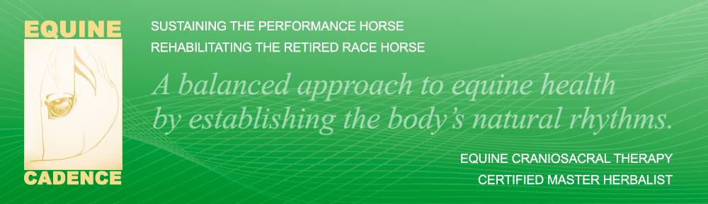 Equine Cadence